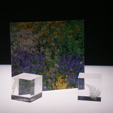 ユニークなアクリル板 加工方法のサンプル